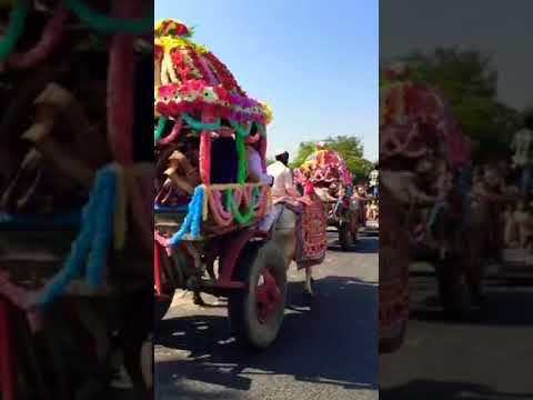 Download Kinjal Dave - Char bangdi wali AUDI laye du    Rajasthani song    Royal Barat video (2018)