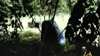toxic somalia extrait 2
