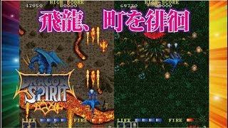 Dragon Spirit ドラゴンスピリット Arcade cheat アーケード チート