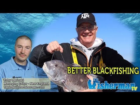 October 3, 2019 New England Fishing Report With Toby Lapinski