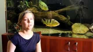 Интерактивный аквариумный туризм - Итоги 3/4 (Ксения Бородай)