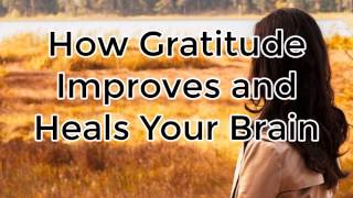 Gratitude Rewires Your Brain for Happiness: Happy Thanksgiving Dr. Romie