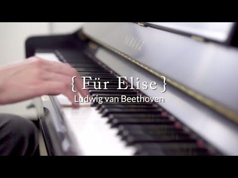 Für Elise  Ludwig van Beethoven, performed  Joseph Hoffman