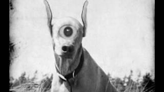 Prana - Alien Pets