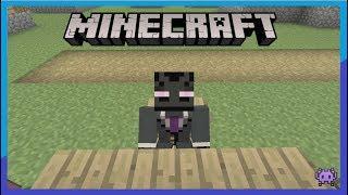10 Coole dinge die man in Minecraft bauen kann !