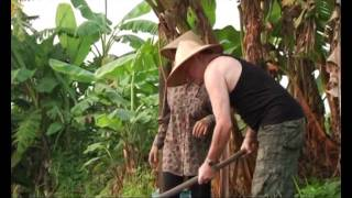 Living Vietnam In A Day - Colin farming - Part 1