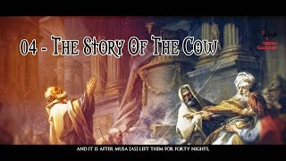 The Story Of The Cow