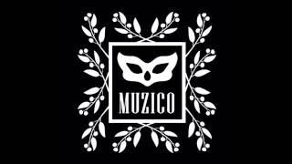 MUZiCo Музико Демо
