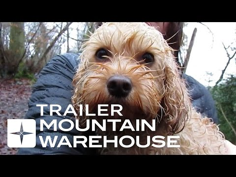 Dog Walkers Documentary Trailer
