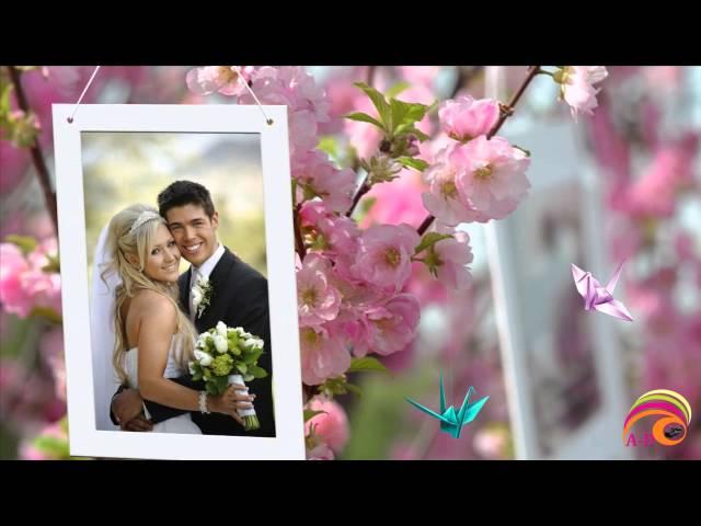 Flores Rojas 'WEDDING'-'Slide Show'