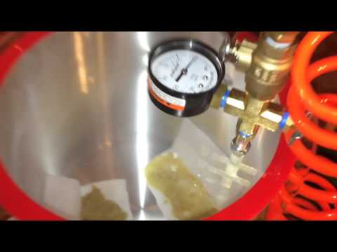 BHO Extraction (How to make shatter)