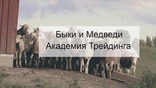 Быки и Медведи  - АкадемияТрейдинга