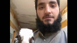 Eyyuhel muslimun (İdlip şehidi Diyarbakır'lı Abdulkadir)
