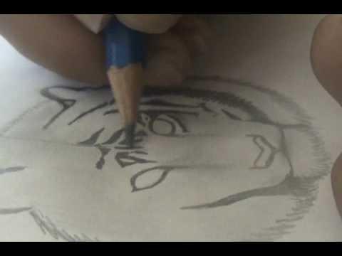 Dibujo de Tigre  YouTube