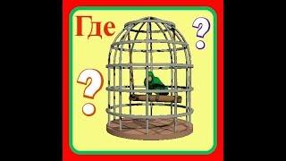 VLOG:Где расположить КЛЕТКУ?//Клетка для ПОПУГАЯ//Уход за попугаем