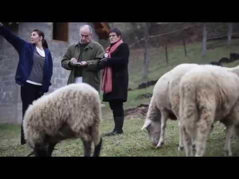 Alastair Stewart OBE in Bosnia and Herzegovina - lendwithcare org