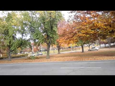 New York City up-close - Mosholu Parkway, going north, from Webster Ave to Jerome Ave, 11/11/13