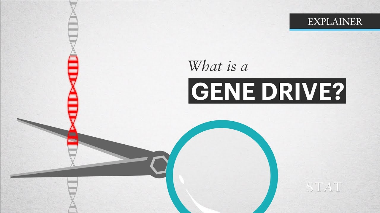 how to find a gene
