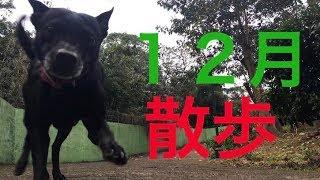 台湾の天気予報によると… 『週五更強冷空氣南下低温探13度!冷氣團南...