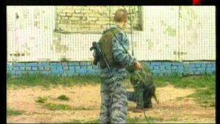 Документальный сериал Оружие ХХ века - Особые боевые средства
