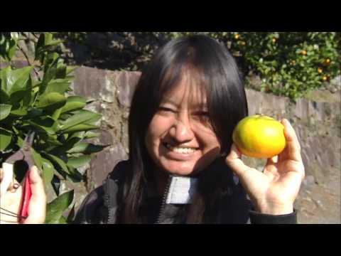 Kumamoto University|#07 Catch Your Dream! -Study in JAPAN-