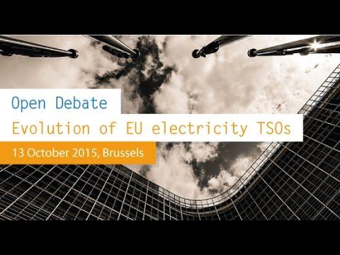 "Workshop on the ""Evolution of EU electricity TSOs"""