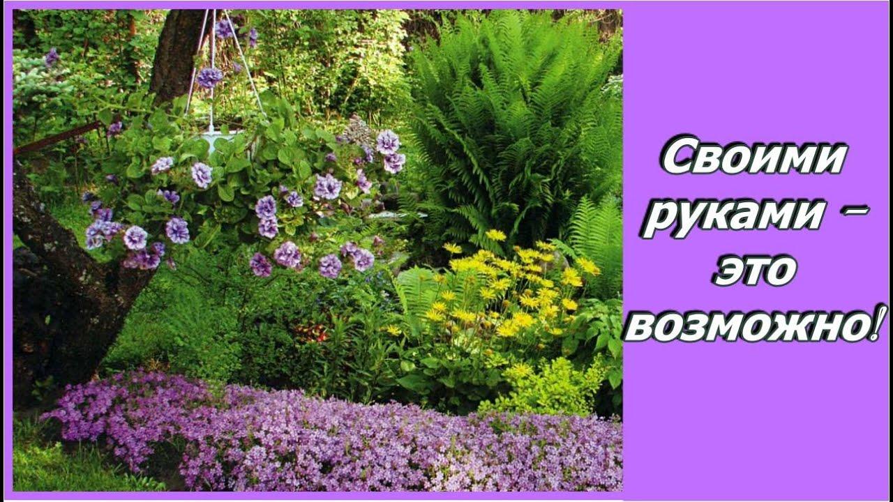 Сайт садовый мир украшаем сад своими руками фото 725
