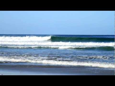 Adult Costa Rica Surf Camp - Beginners