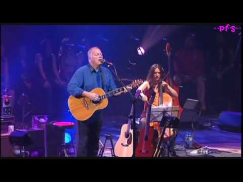 Comfortably numb Live, David Gilmour and Bob Geldof  HD