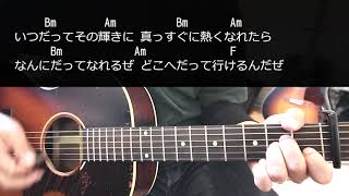 【ギター】 光と影 / ハナレグミ HANAREGUMI 初心者向け コード