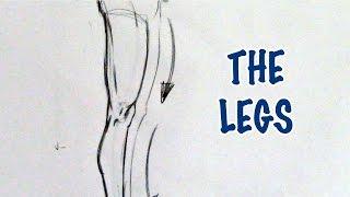 Draw Legs