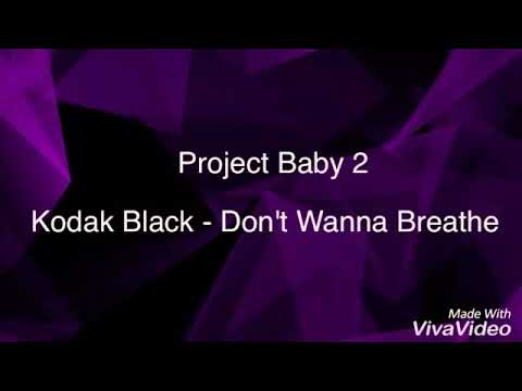 Kodak Black - Don't Wanna Breath [Lyrics] Project Baby 2 Album