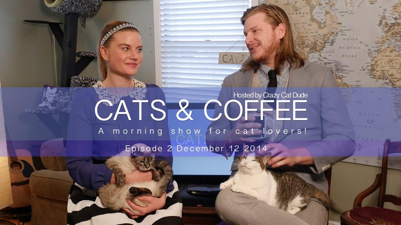 Coffee cat mama episode 3 watch online - Downton abbey season 2 review