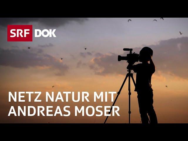 Schweizer Jugend filmt wilde Tiere | NETZ NATUR mit Andreas Moser | Doku | SRF DOK