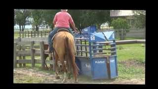 Jet n Dunny 8 11 13 Roping Prospects  4 Sale
