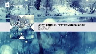 Andy Bianchini Feat Roman Polonski No Cold Ice Radio Edit FULL