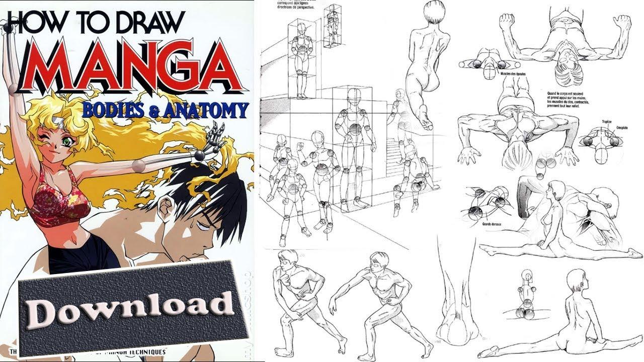 19 How To Draw Manga Vol 25 Bodies & Anatomy - YouTube