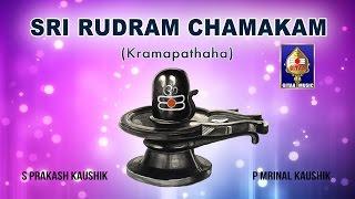 Durga Suktham | S Prakash Kaushik & P Mrinal Kaushik