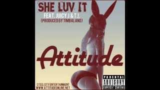 Attitude -
