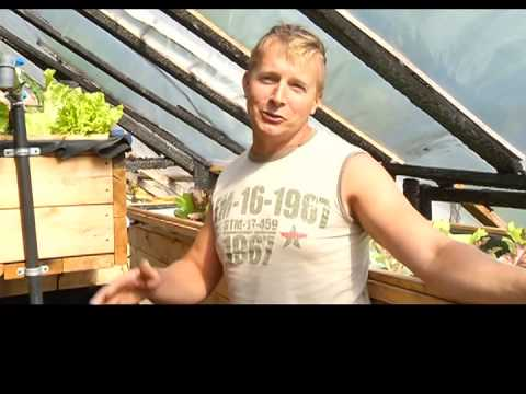 Northern Gardener - Aquaponics