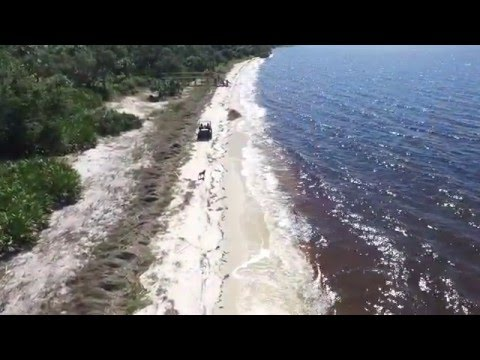 Deer Island - 90 +/- Acre Sportsman's Paradise FOR SALE