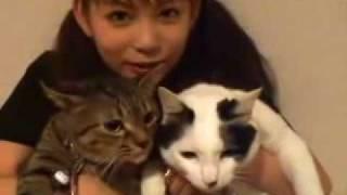 マミタス・チビ太紹介ビデオ プライベート感が出てます。 マミタス・チ...