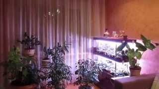 Продам 2-ух ком.53кв.м.с.м.т.Озерное Житом.обл.(, 2015-01-28T19:13:52.000Z)