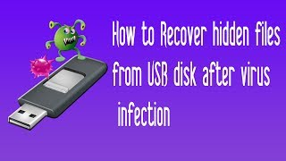 How to Recover hidden files from USB disk after virus infection