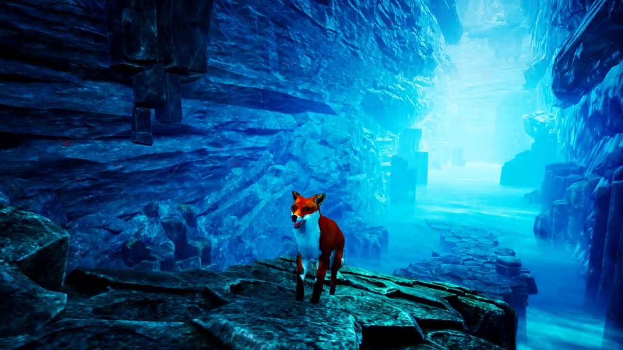 Spirit of the North : Sneezing fox!