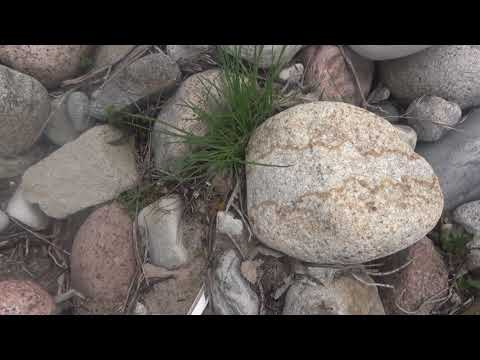 Красивые камни на речке