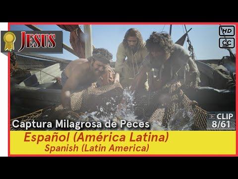 Captura Milagrosa De Peces►Español (es-419)►JESÚS 8/61 Spanish (Latin America)