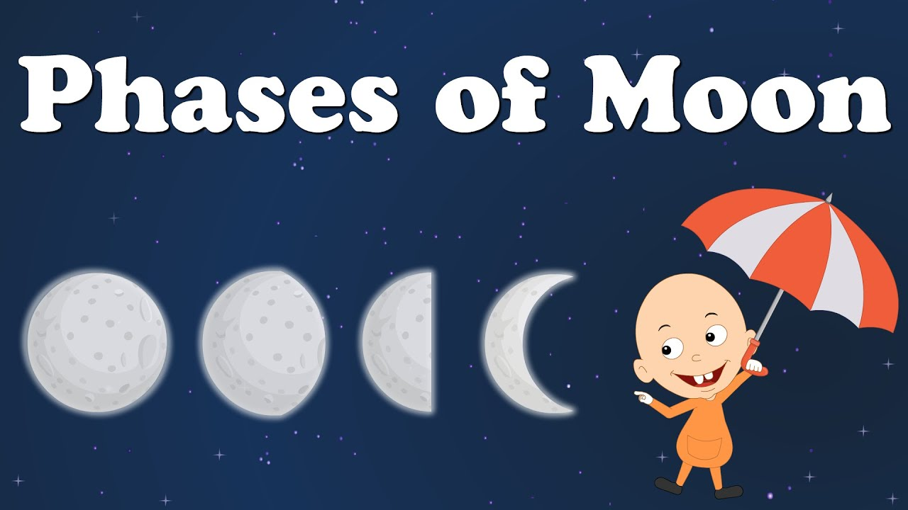 Phases of Moon | #aumsum #kids #education #science #learn - YouTube