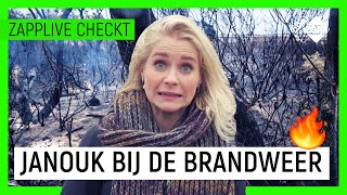 BOSBRANDEN IN NEDERLAND NET ZO HEVIG ALS IN AUSTRALIË? | Zapplive Checkt | NPO Zapp