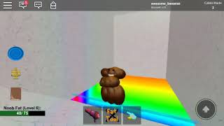 Me playing ROBLOX as a poop